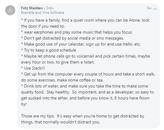 Screenshot of Remote Work Tips comment from software developer Fritz Madden.
